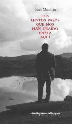 """""""Los lentos pasos que nos han traído hasta aquí"""", de Juan Marchán"""